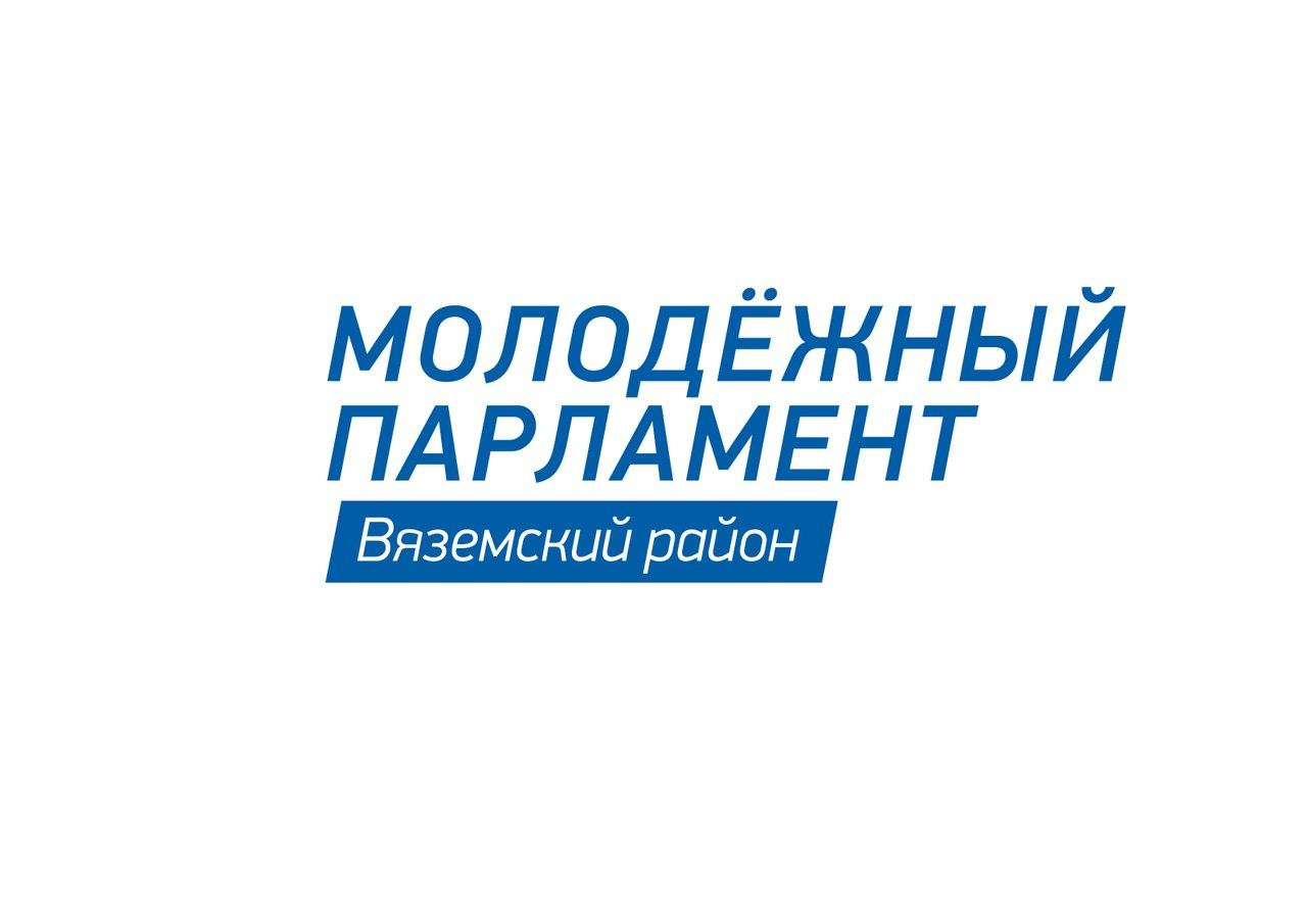Отчет молодежного парламента о деятельности за текущий год был представлен на заседании Вяземского районного Совета депутатов