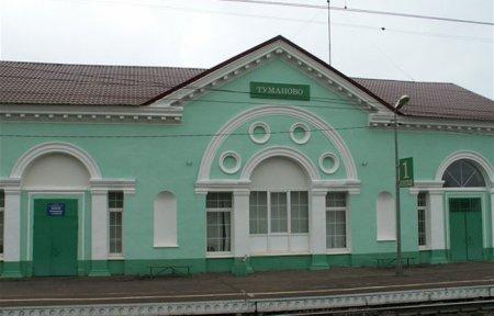 День села в д. Туманово